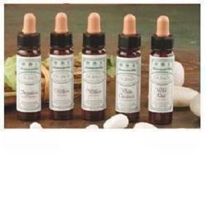 AINSWORTHS IMPATIENTS 10ML