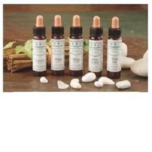 AINSWORTHS RECOV REMEDY 10ML